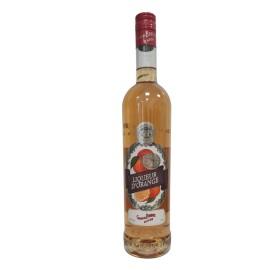 Gabriel Boudier Orange Fine Champagne Liqueur